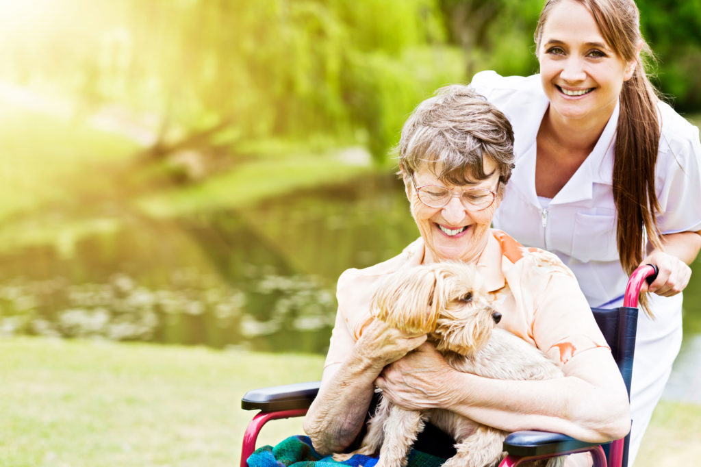 senior women in wheelchair with her dog and caregiver